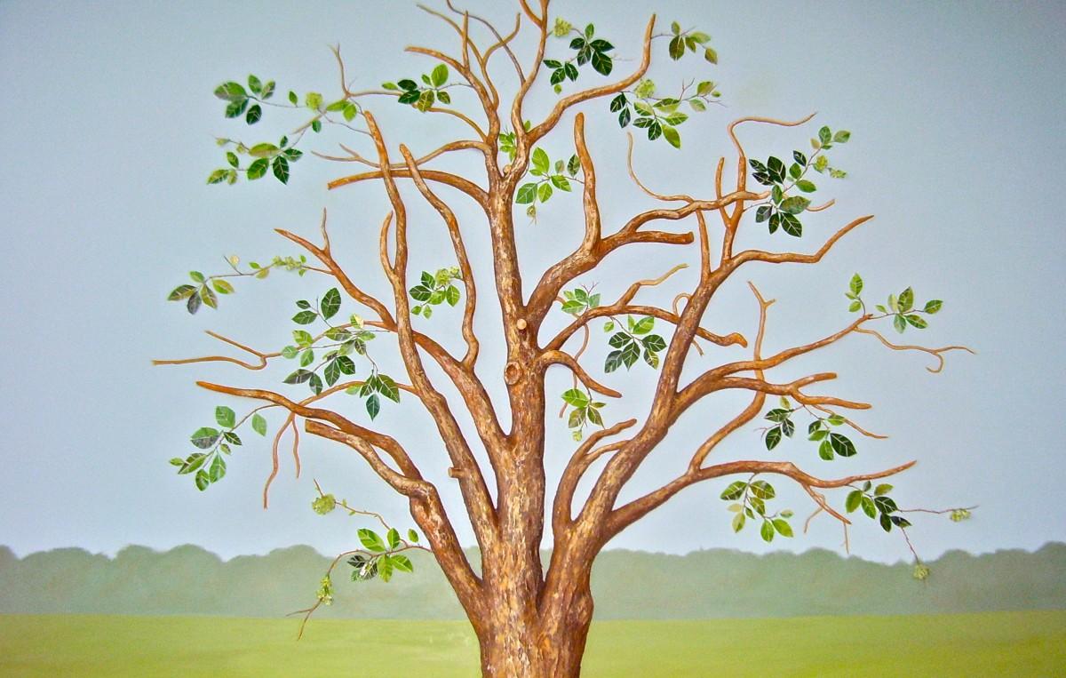Custom Handpainted Murals Hand Painted Trees Tree Murals